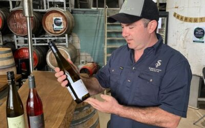 Australian wine industry setbacks could see many small players go out of business